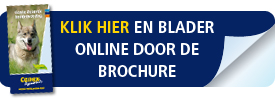CD_button_brochure
